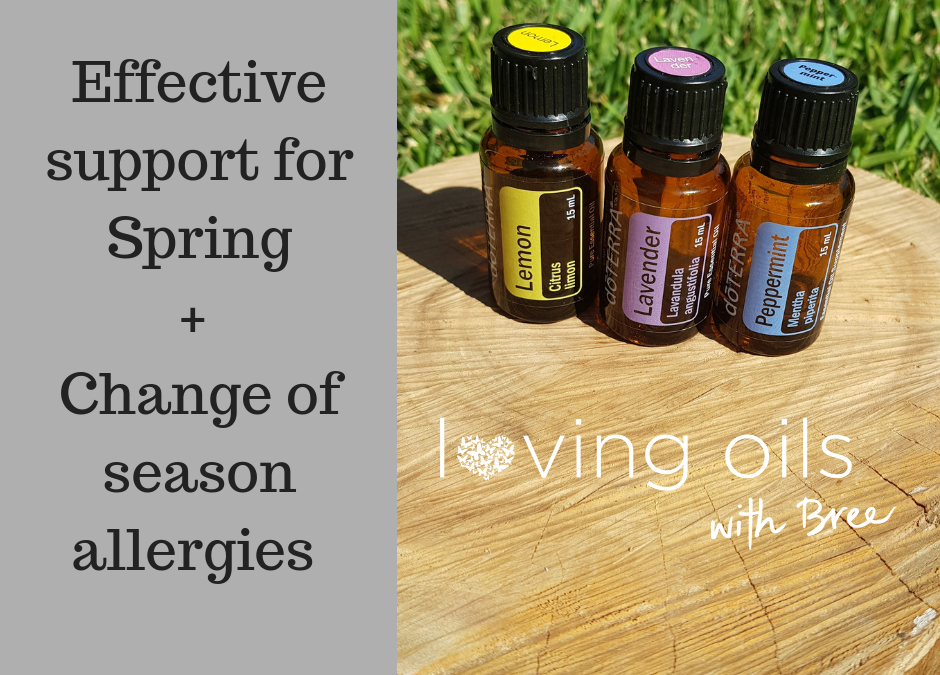 Natural effective support for seasonal allergies and springtime