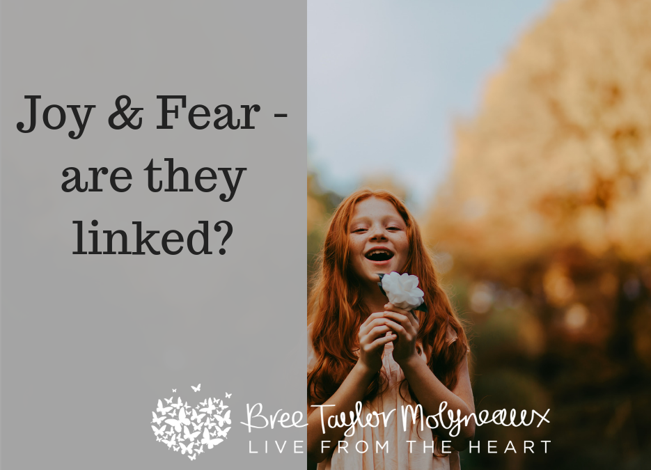 Relationship between Joy and Fear | Bree Taylor Molyneaux